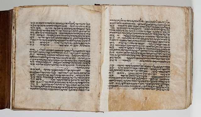 Folios 517v-518r: Deuteronomy 20:3-21:4