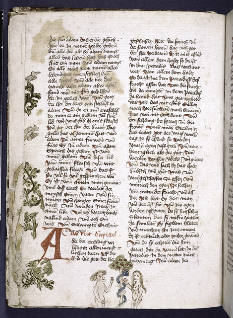 Text with initial, rubric, placemarkers and border design including drawing of Adam, Eve and the Serpent.