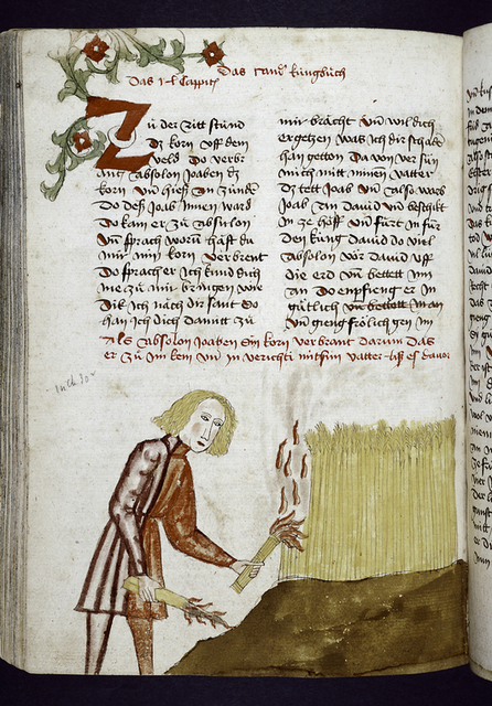 Text with rubrics, placemarkers, large red initial with floral design.  Half-page miniature of a man burning wheat.
