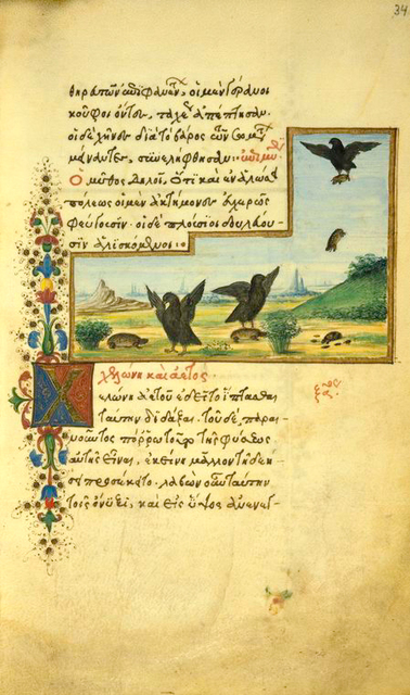 The greese and the cranes [cont.]; The tortoise and the eagle.