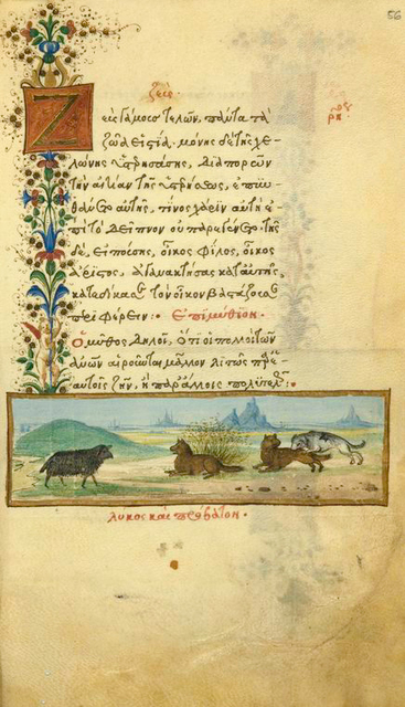 Zeus and the tortoise [cont.]; The wounded wolf and the ewe.