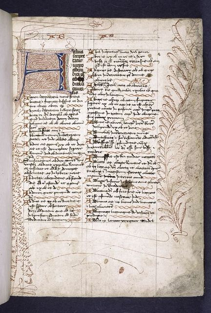 Opening of text, large letter with penwork, small initials and linefillers, hierarchy of scripts.  Large penwork feather drawn in border.