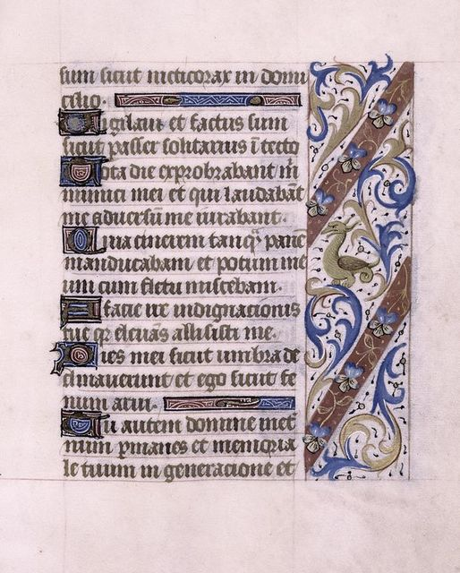 Page of text with initials, border design includes beast.
