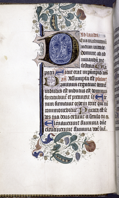 Partial border decoration, including peapods, and large gold initial.