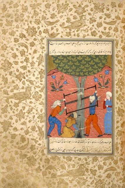 The death of the prophet Zakarîyâ (Zacharias), who is killed when the tree in which he is hiding is sawed in two.