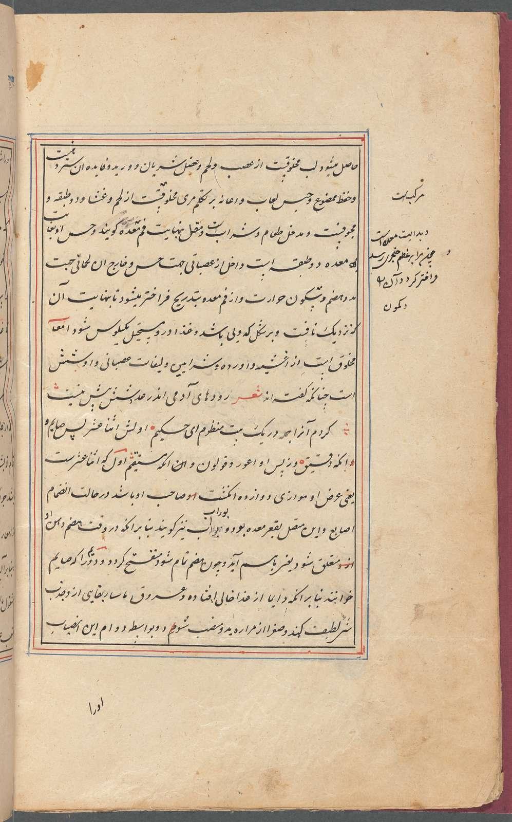 Tasrîh-i Mansûrî , fol. 35v
