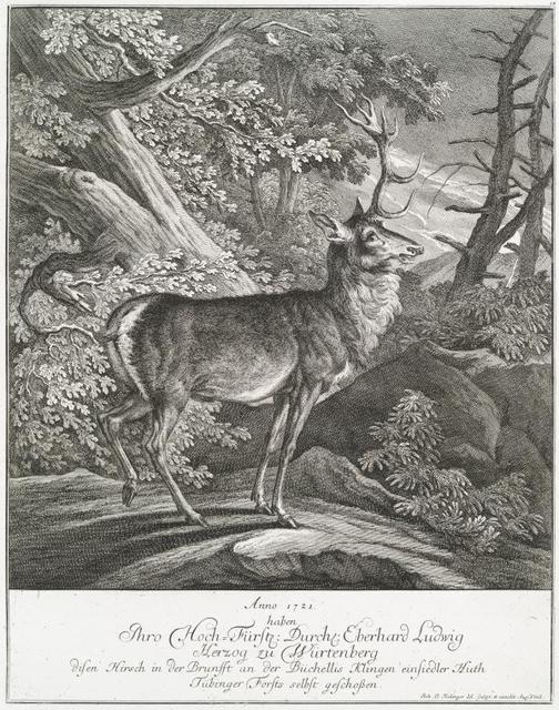 Anno 1721 haben Thro Hoch-Fürstl. Durchl. Eberhard Ludwig Herzog zu Würtenberg disen Hirsch in der Brunfft an der Büchcellis Klingen einsiedler Huth Tübinger Forsts selbst geschossen.