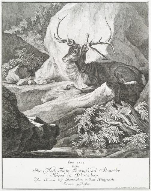 Anno 1729 haben Thro Hoch-Fürstl. Durchl. Carl Alexander Herzog zu Würtenberg disen Hirsch bey Battaschin in dem Königreich Servien geschossen.
