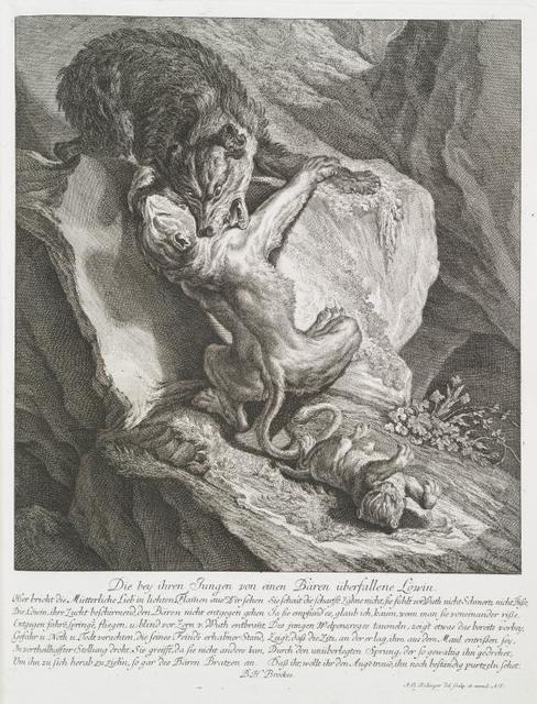 Die bey ihren Jungen von einen Bären überfallene Löwin.