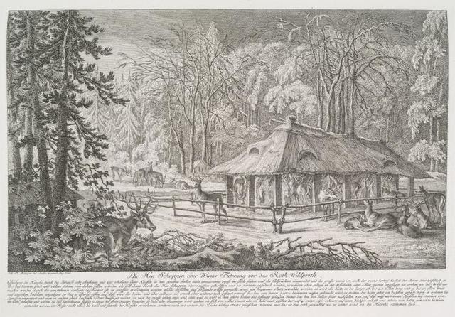 Die Heu Schuppen oder Winter Füterung vor das Roth Wildpreth.