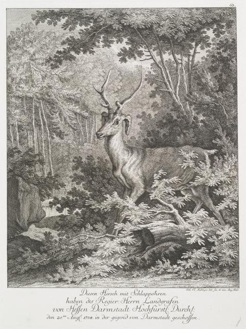 Disen Hirsch mit Schlappohren haben des Regier. Herrn Landgrafen von Hessen Darmstadt Hochfürstl. Durchl. den 20ten Augl. 1754 in der gegend con Darmstadt geschossen.