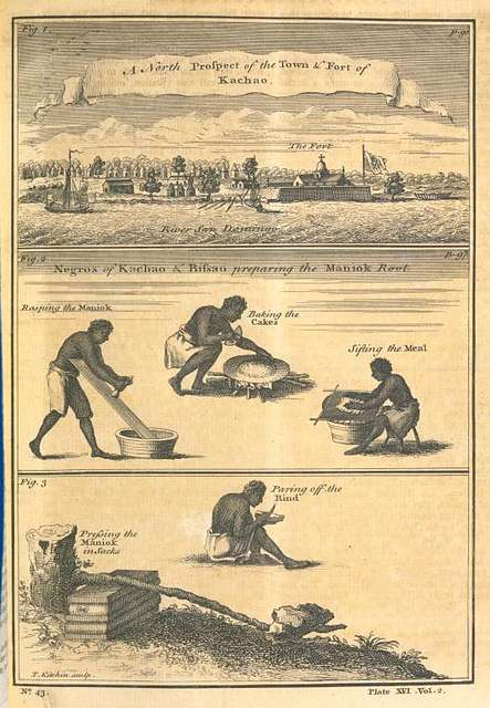 A north prospect of the Town & Fort of Kachao; Negroes of Kachao & Bissao preparing the Maniok root