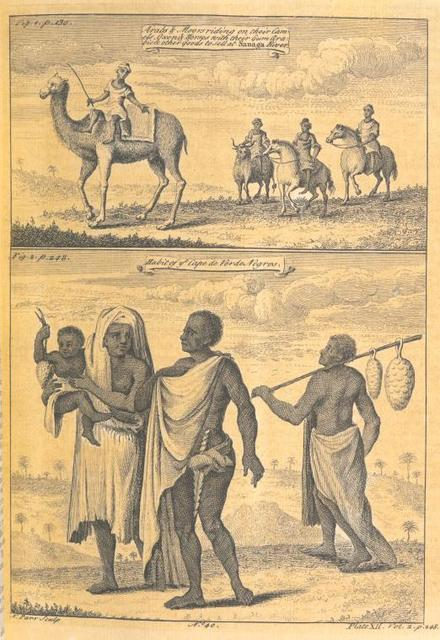 Arabs & Moors riding on their camels, oxen & horses with their Gum Arabic & other goods to sell at Sanaga River; Habit of the Cape de Verde Negroes.