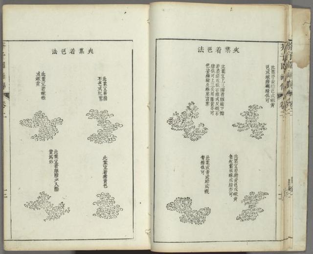 Kaishien gaden = The mustard seed garden painting manual.