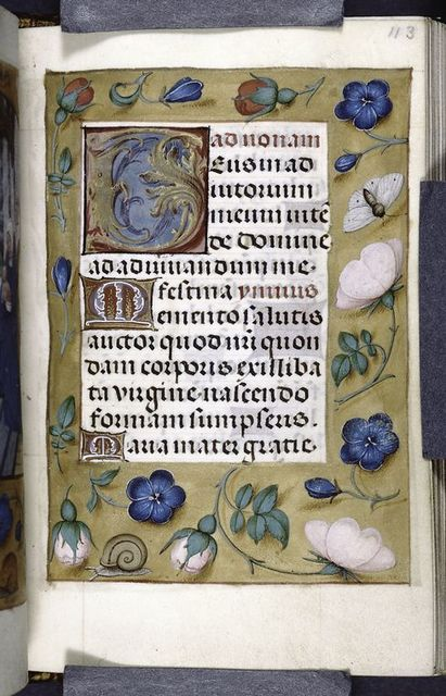 Page of text with initials, gold border with flowers and insects.