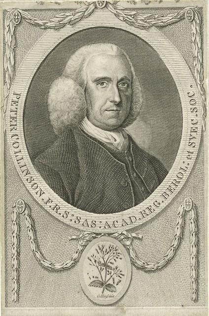 Peter Collinson, F.R.S. Sas. Acad. Reg. Berol. et Svec. Soc.