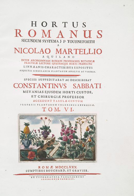 Hortus Romanus juxta systems Tournefortianum paulo [engrd. title page, V. 6]