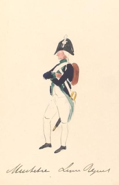 Bataafsche Republiek. Musketier Linie Regiment. 1806