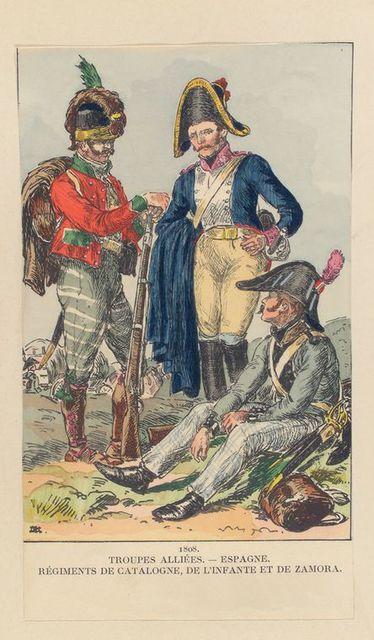 1808, Troupes Alliées - Espagne, Régiments de Catalogne, De L'infante et de Zamora