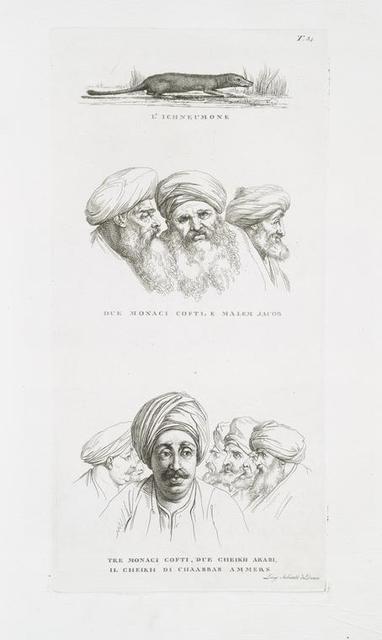 L'ichneumone; Due monaci Cofti, e malem Jacob; Tre monaci Cofti, due Cheikh Arabi, il Cheikh di Chaabbas Ammers.