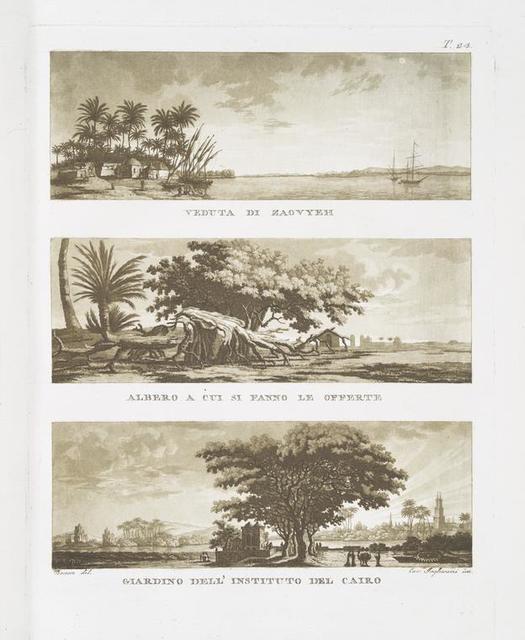 Veduta di Zaovyeh; Albero a cui si Fanno le offerte; Giardino dell' Instituto del Cairo.