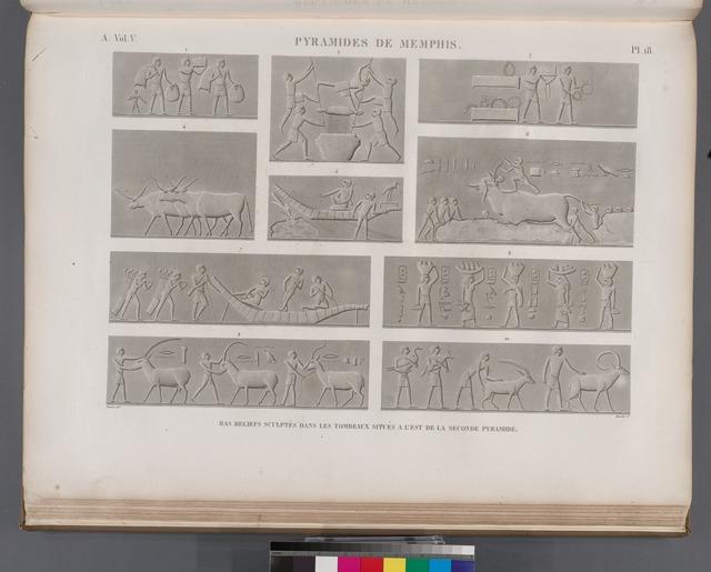 Pyramides de Memphis. Bas-reliefs sculptés dans les tombeaux situés à l'est de la seconde pyramide.