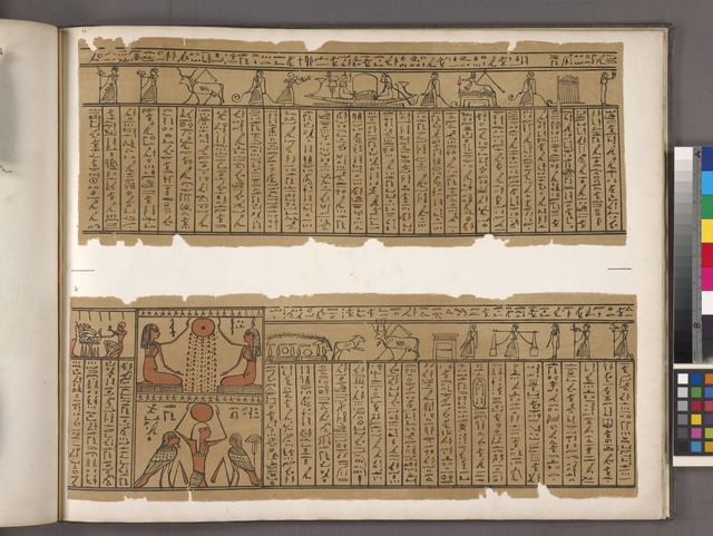 [Papyrus taken from a mummy at Thebes.]