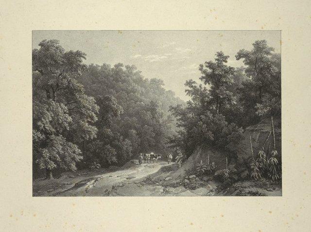 Schooley's Springs