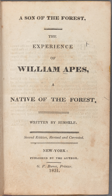 A son of the forest title page