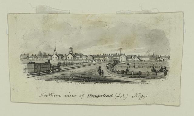 Northern view of Hempstead (L.I.) N.Y.
