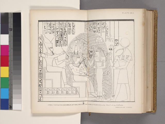 Atmoo, Thoth, & the goddess of letters [Seshat], writing the name of Remeses on the fruit of the persea. Memnonium, Thebes.