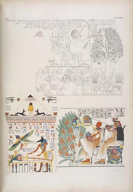 Due soggetti che figurano la dea Netpe uscente dall' albero mistico, a dar cibo e brevanda ai defunti. - Anubi [Anubis] sta sulla mummia, mentre vola sopra quella l'anima con i segni di trasmigrazione.
