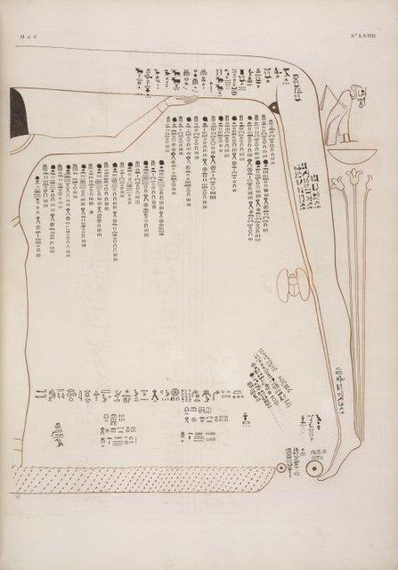 Due tavole da riunirsi in una: vasta rappresentanza della dea Netpe, immagine simbolica del cielo, ove sta scritto la levata e il tramonto delle costellazioni. Soffitto della sala del sarcofago della tomba di Ramses IX.