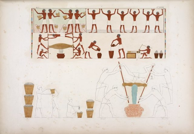 Figg. 1, 2 e 3. Vendemmia; pestatura delle uve; bigonce, e torchio stretto da cinque uomini.
