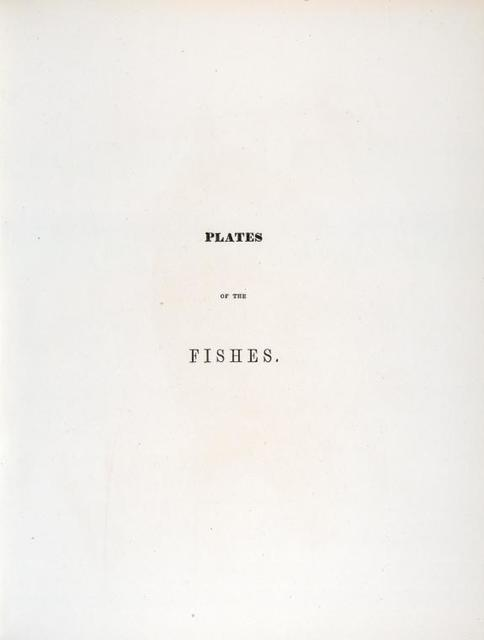 Title page [Plates of the fishes]