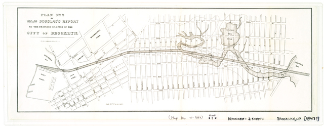 Plan[s] of Majr. Douglas's report on the drainage of a part of the city of Brooklyn.
