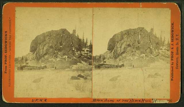 Back bone of the Black Hills, Wyoming.