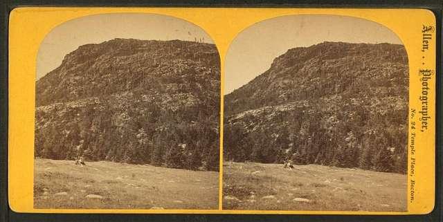 Dog Mountain profile, Mt. Desert.