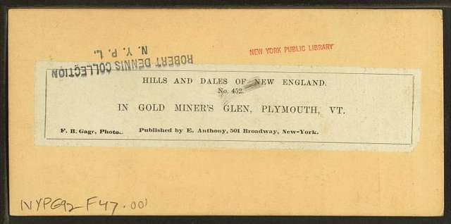In gold miner's glen, Plymouth, Vt.