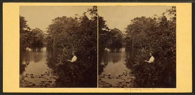 On Lycoming Creek, Pa. [Man fishing.]