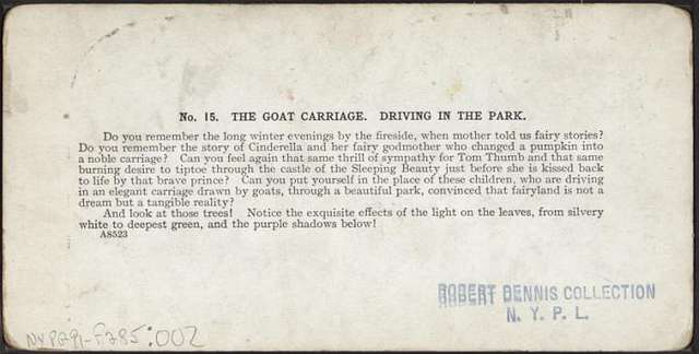 The goat carriage. Driving in the park.