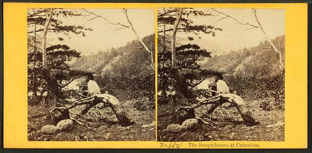 The Susquehanna at Catawissa. [Man sitting a hill above the river.]