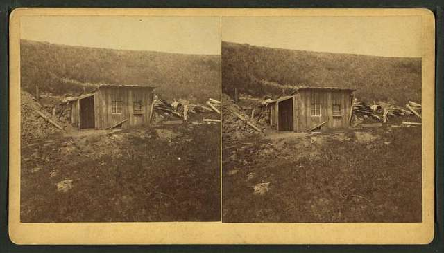 View of a log house.