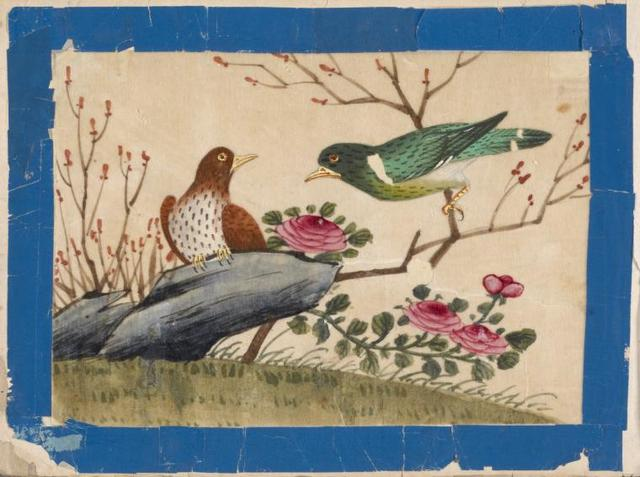 Birds of China. [Brown bird on stone, green bird on branch.]