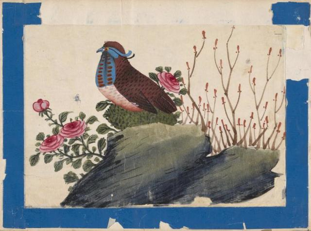 Birds of China. [Brown bird with blue face on stone.]