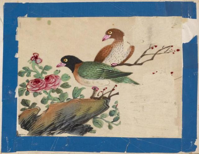 Birds of China. [Green bird with black head, brown bird.]