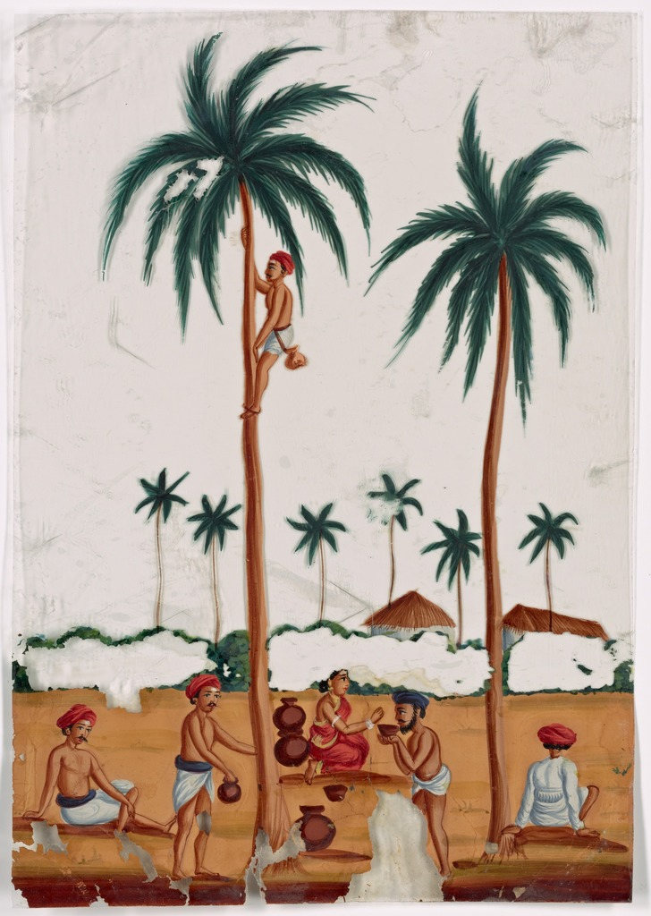 Toddy gatherers in landscape with palm trees