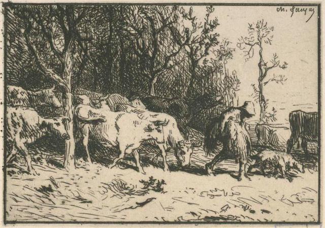 Paysage : troupeau de vaches.