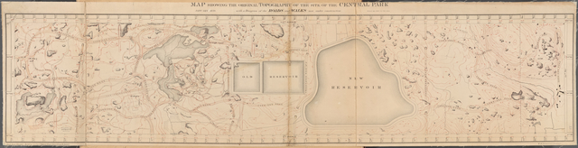 Map Showing the Original Topography of the Site of the Central Park with a Diagram of the Roads and Walks now under construction. January 1859