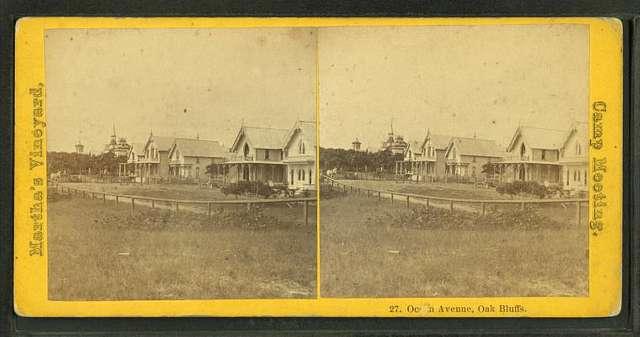 Ocean Avenue, Oak Bluffs.